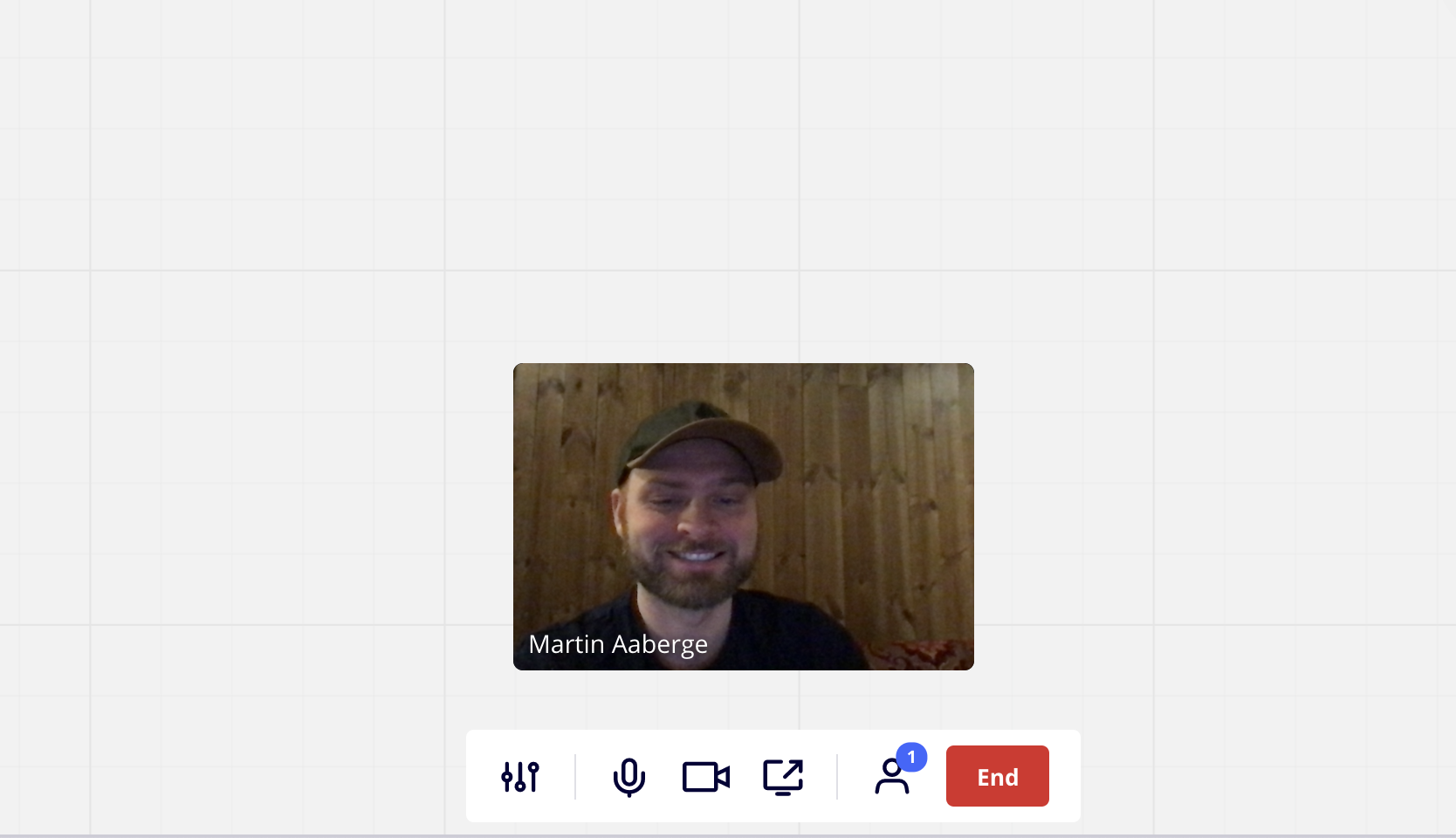 screenshot of the video chat in progress
