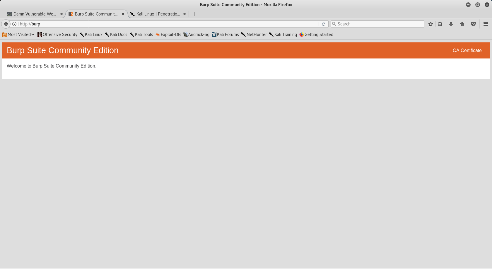 Burp Suite: Webpage Enumeration and Vulnerability Testing