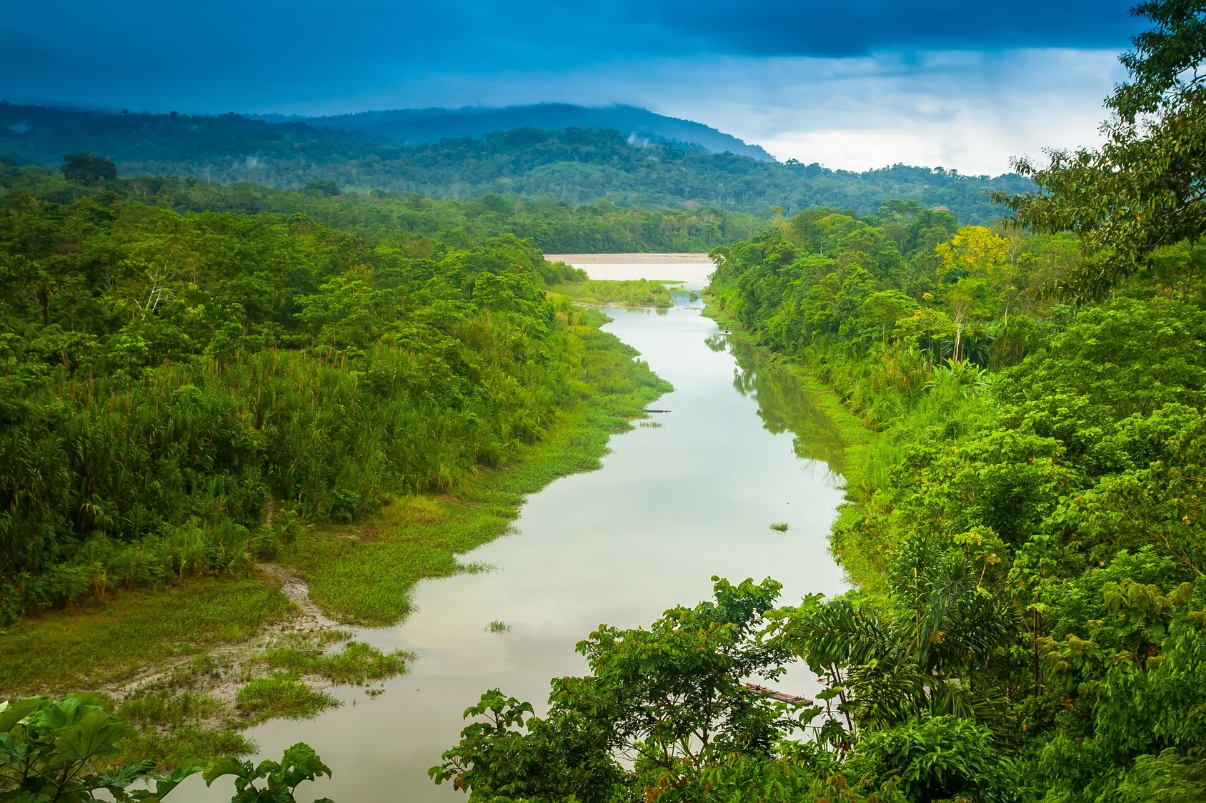 Picture of Amazon River and surrounding jungle