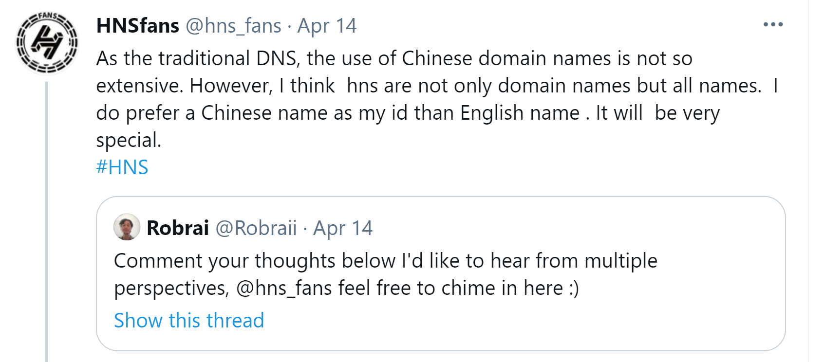 HNSfans speaking on IDN's in the HNS ecosystem. They are the leading Chinese connector in the community.