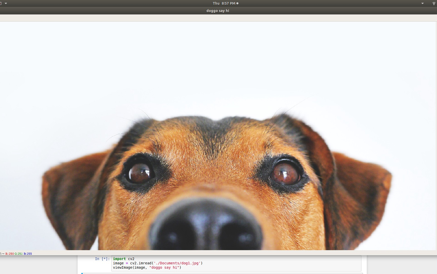 OpenCV-Python Cheat Sheet: From Importing Images to Face