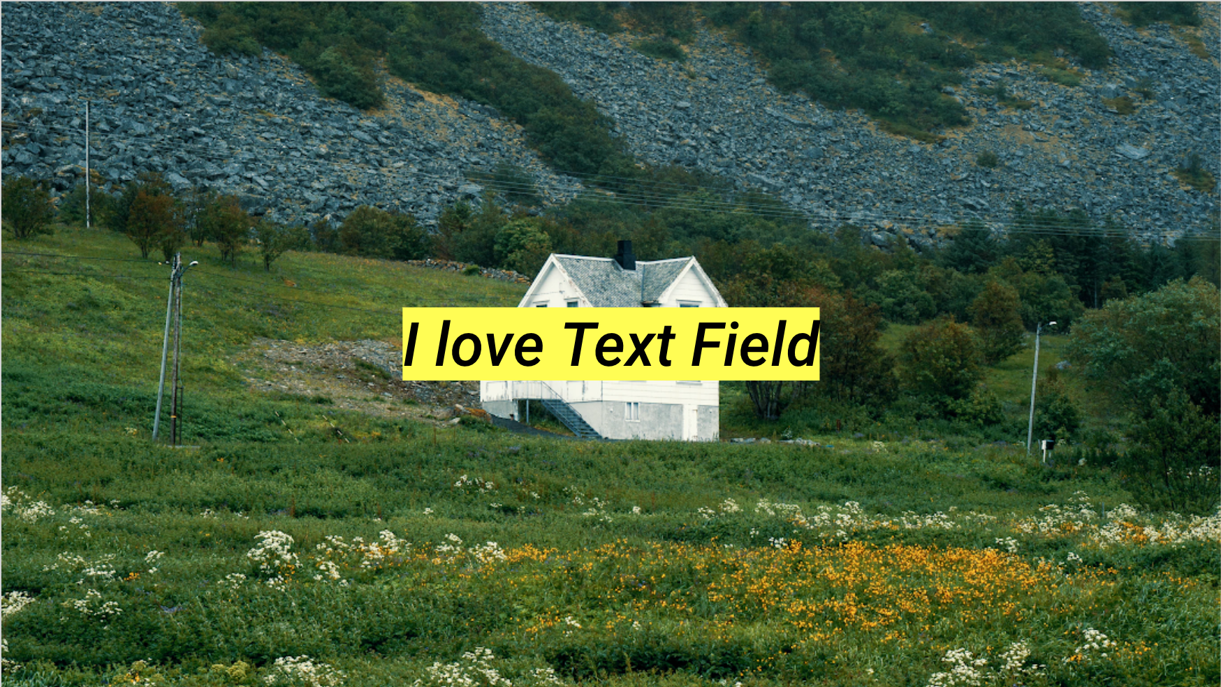 Why I love Text Field from Material Design? - Black Lens
