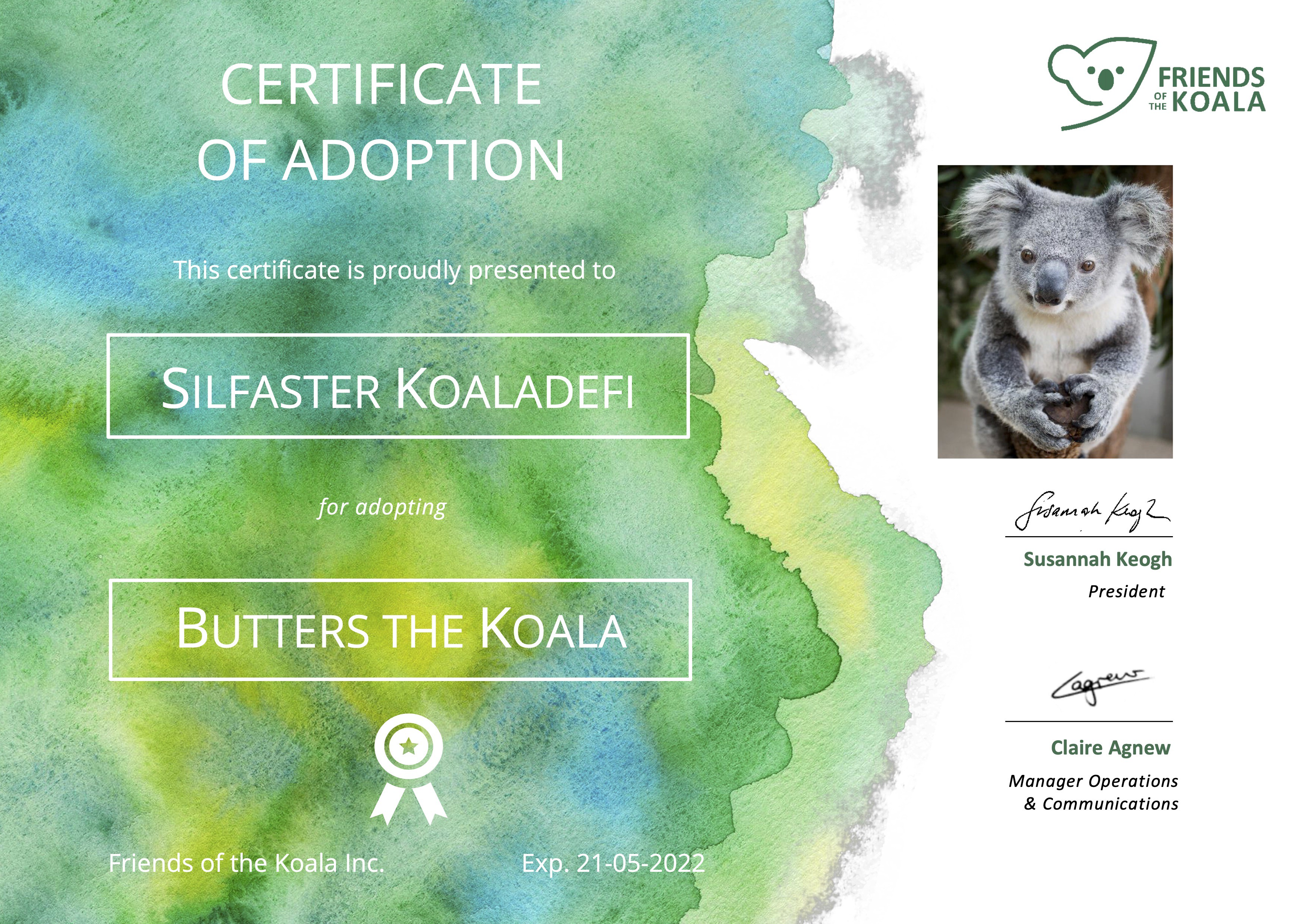 https://friendsofthekoala.org/ Friends of the Koala is committed to conserving koalas and preserving and enhancing their habitat, particularly in the Northern Rivers region of New South Wales. In doing this, we aim to make a key contribution to Australia's biodiversity.