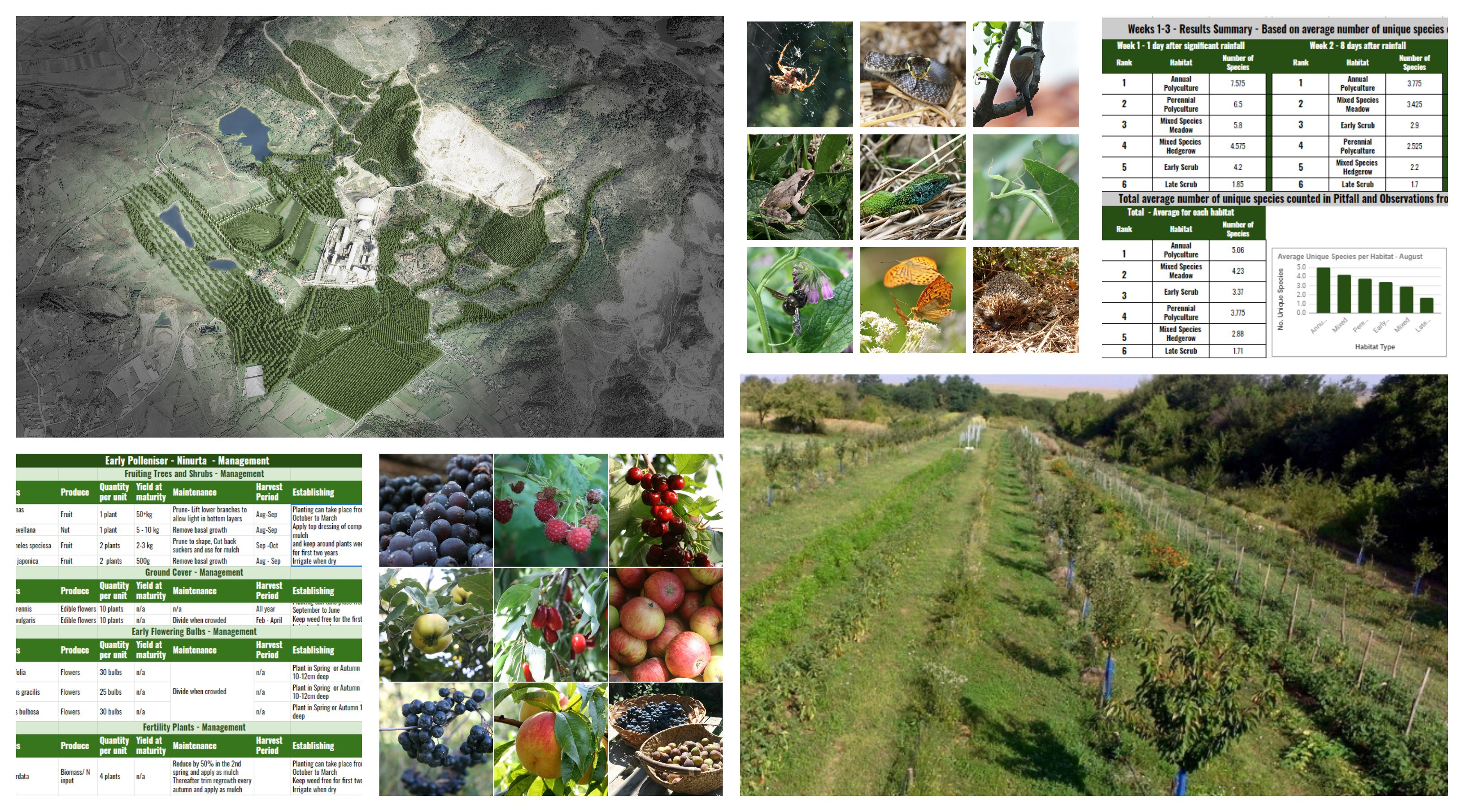 Biodiversity And Habitat In The Garden Farm Landscape Why It Is Important And How We Are Attempting To Measure It By Paul Alfrey Medium