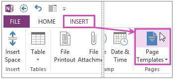 OneNote page templates