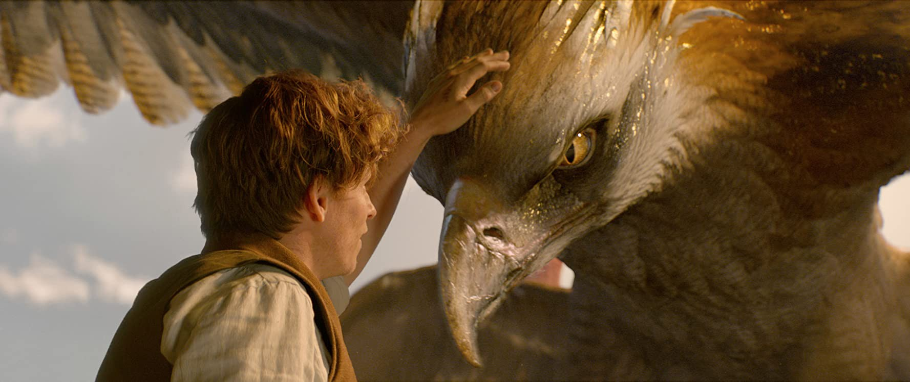 A scene from Fantastic Beasts where Newt Scammander (Eddie Redmayne) pets a Thunderbolt's head.