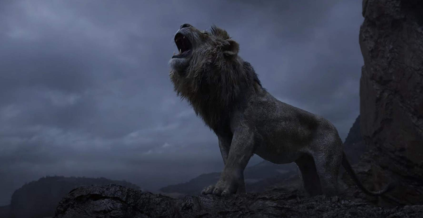 The Lion King Disney Movies 2019 By The Lion King 2019 Film Medium