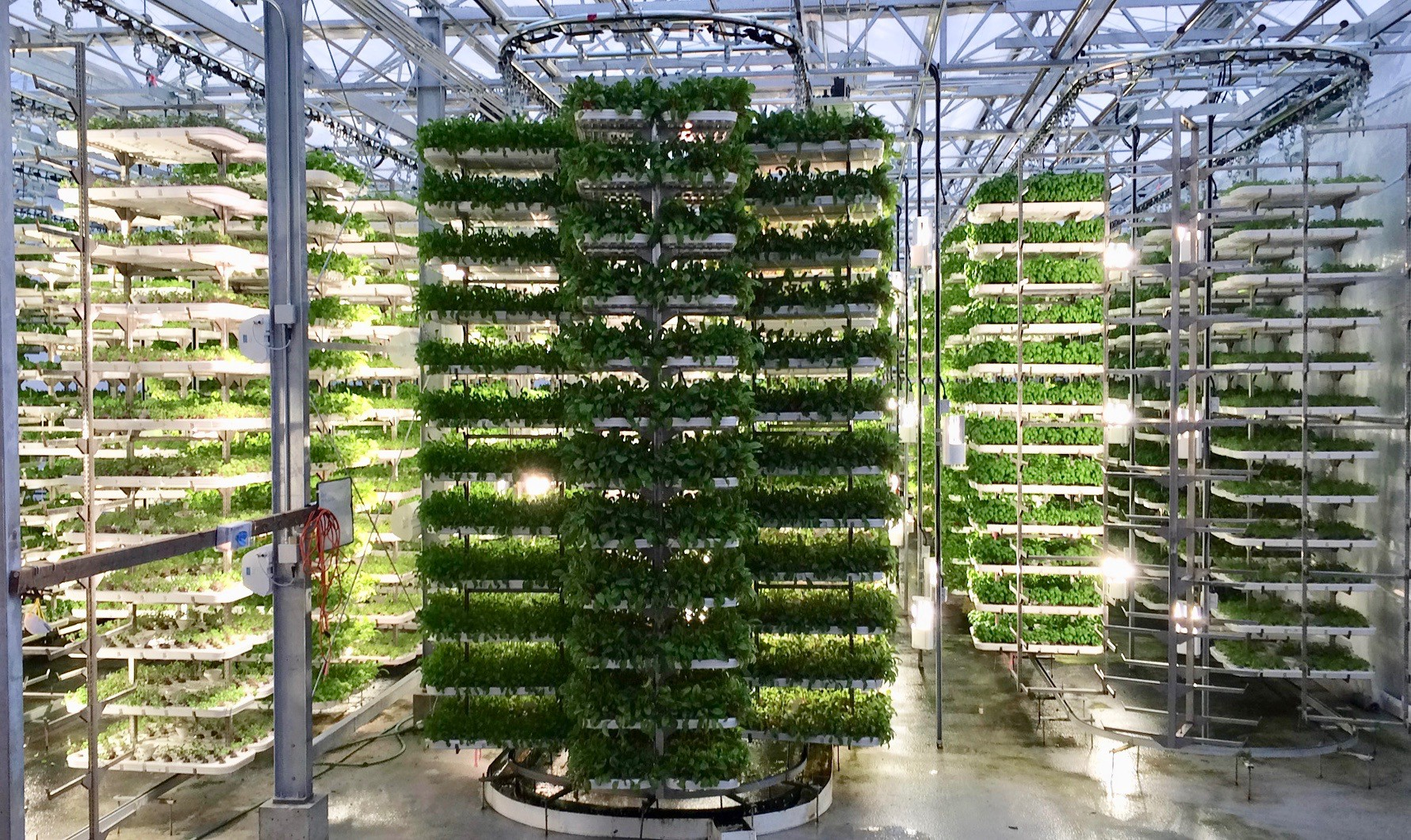 Digitization, and the future of urban agriculture. | by Mike Nasseri |  Medium