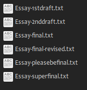 Screenshot of an essay file with different versions