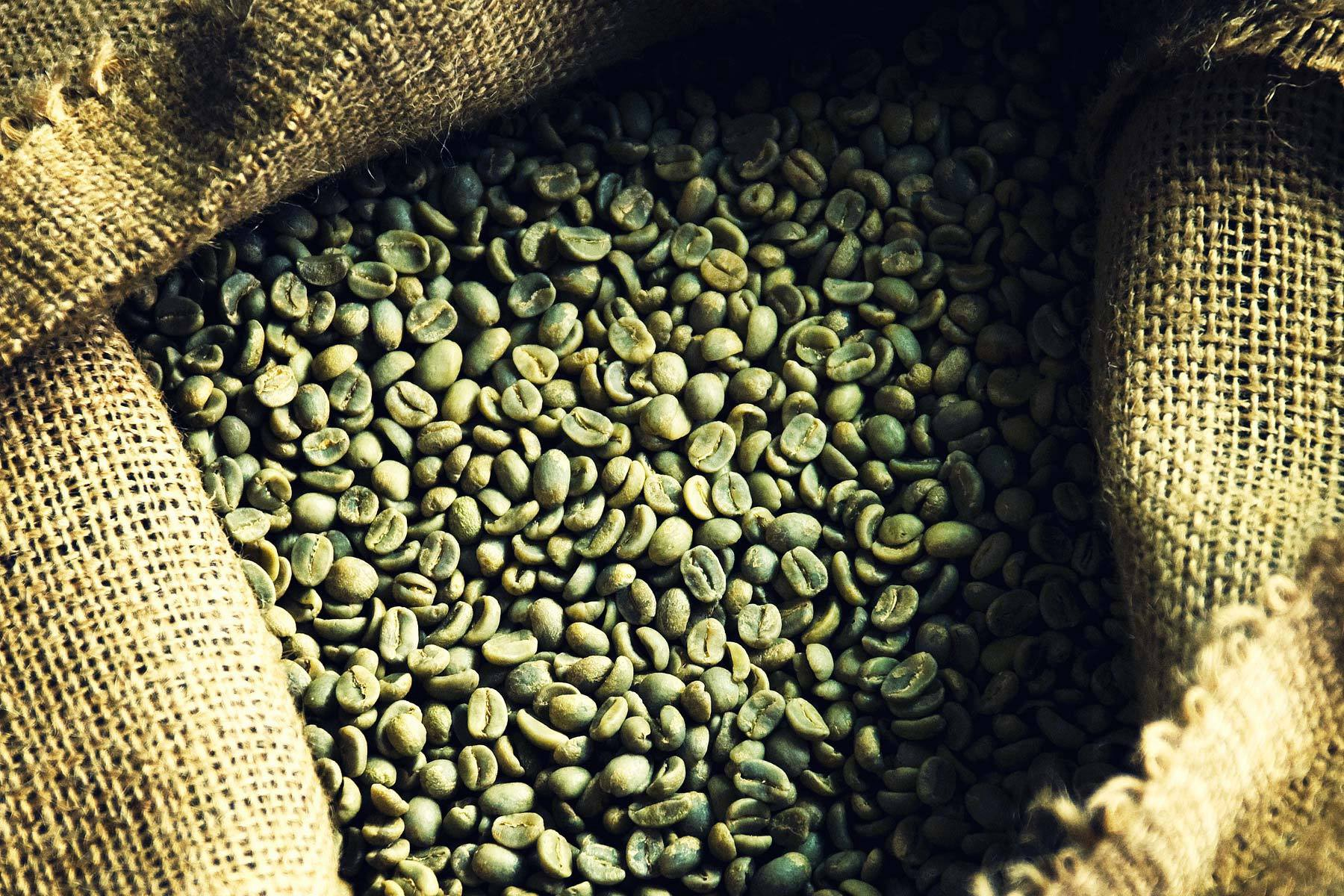 The Weight Loss Benefits Of Green Coffee Bean By Nanangri Medium