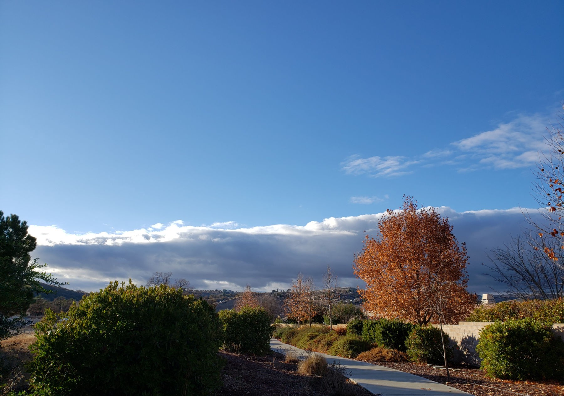 Shadows Across the Charolais Corridor Trail in Paso Robles, California with a long gray thundercloud