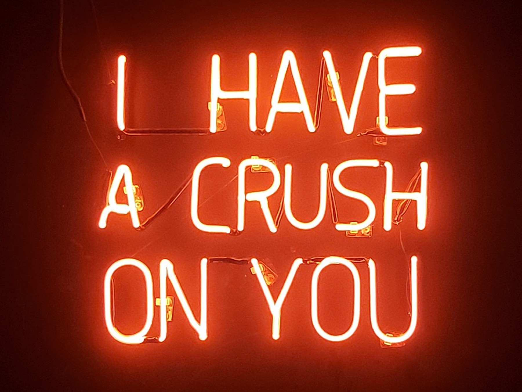 """I have a crush on you"" in a red neon sign"