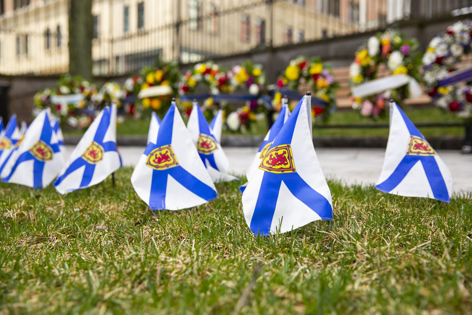 Several Nova Scotia flags in front of wreaths.