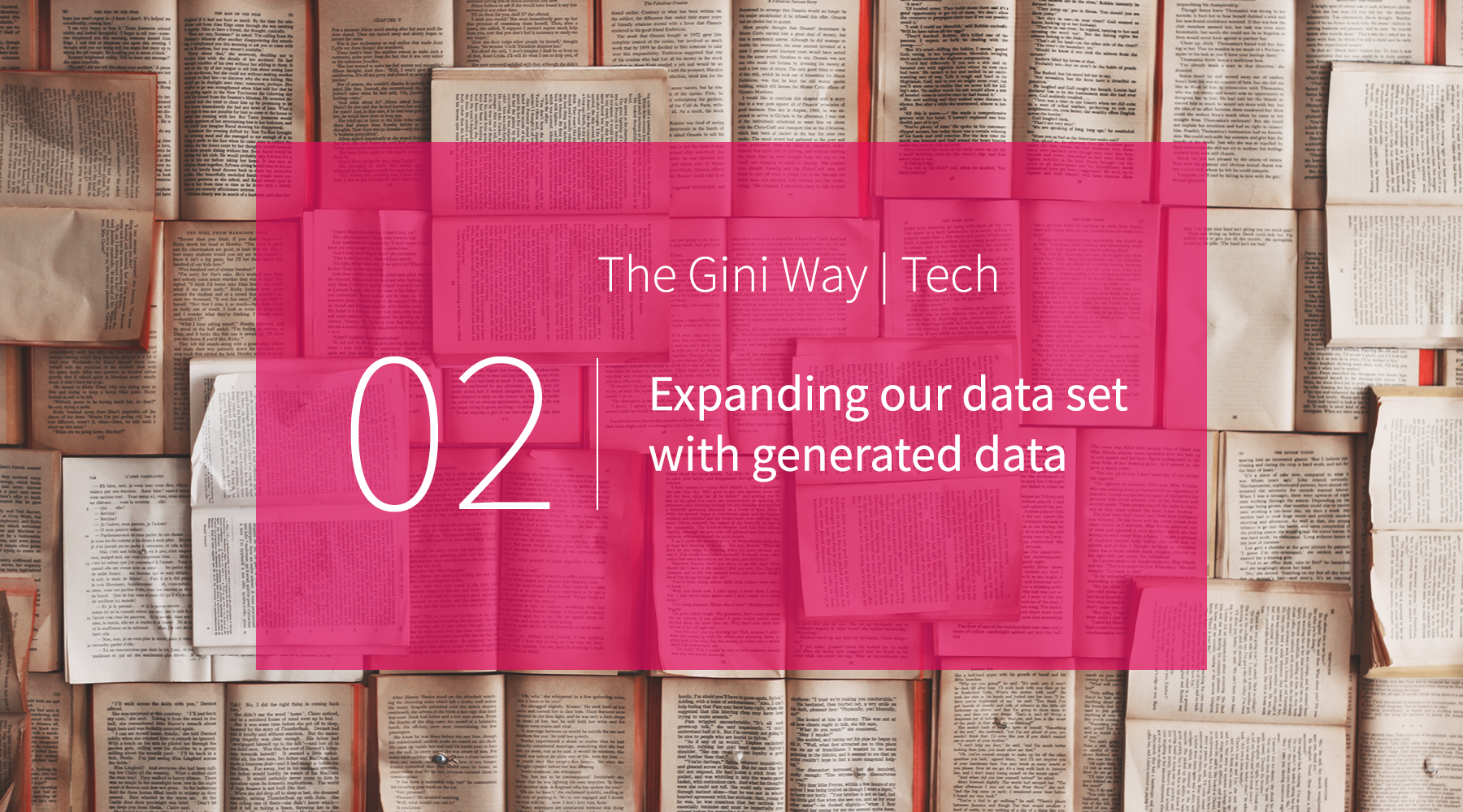 Expanding our data set with generated data - The Gini Way