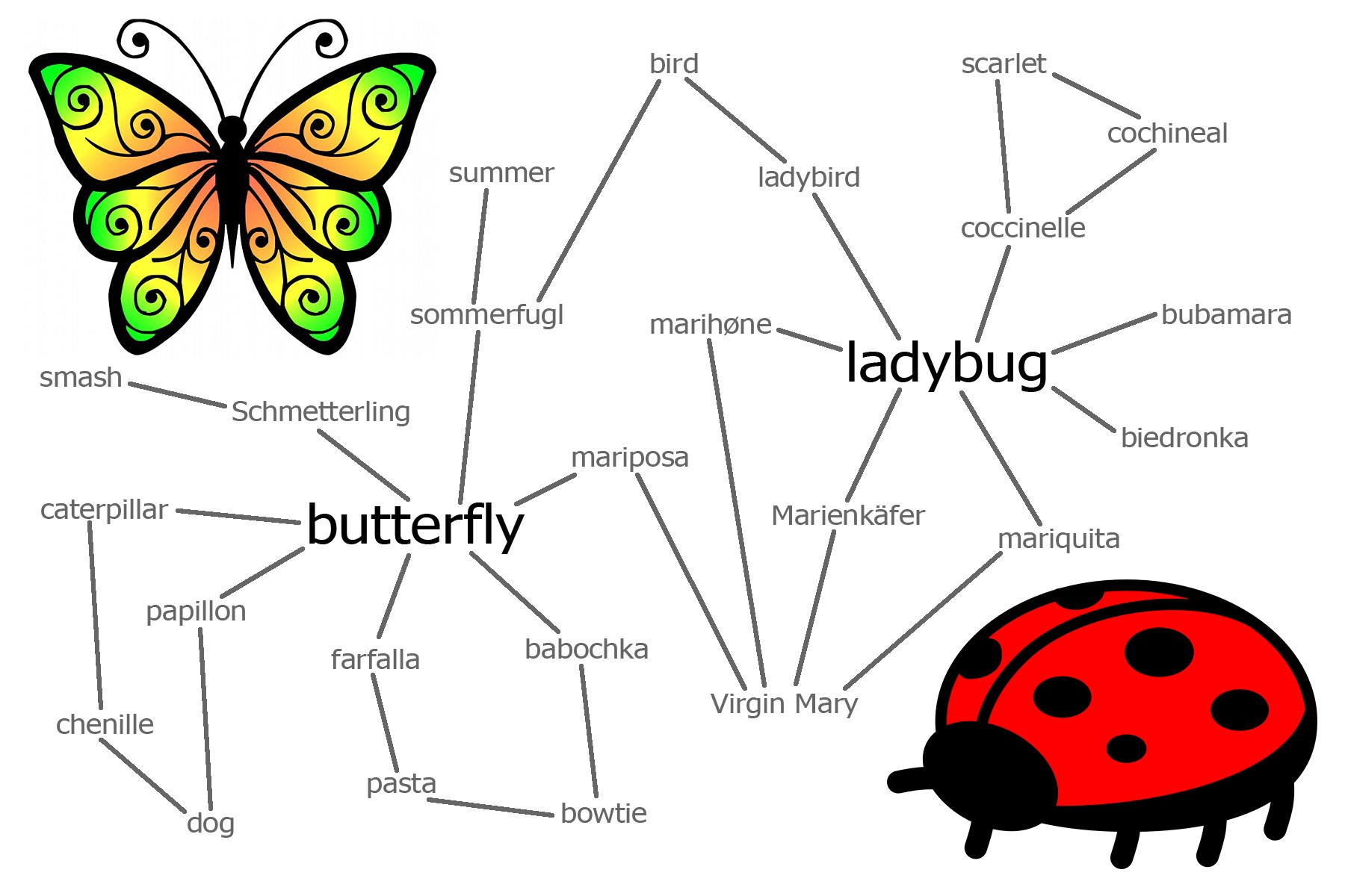 Word Connections: Butterfly & Ladybug - The Philipendium
