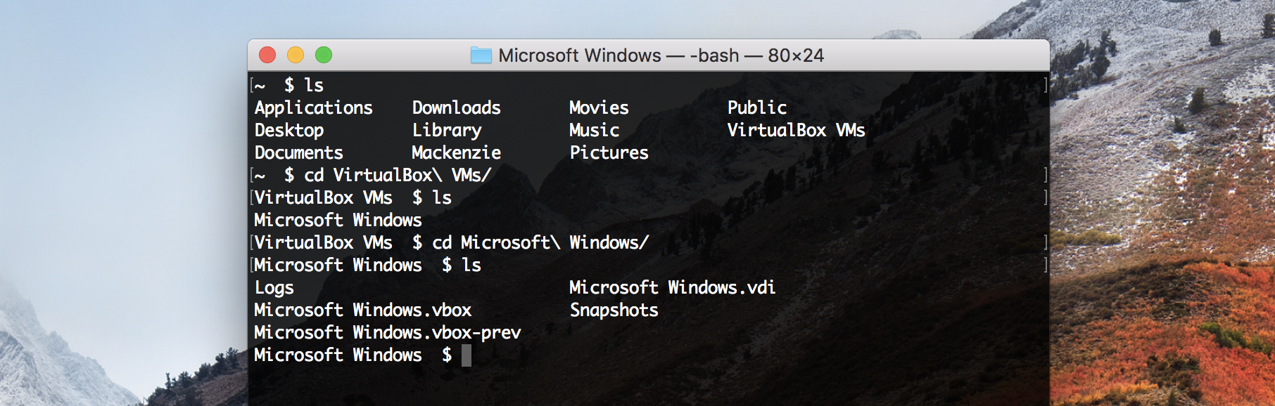 Increasing Storage Space for a Windows VirtualBox VM on Mac OS X