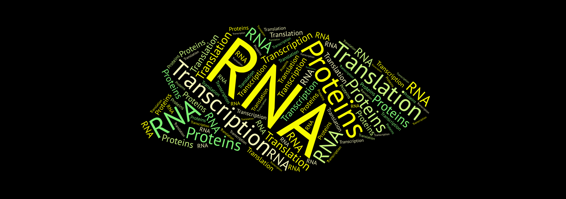 Starting off in Bioinformatics — RNA Transcription and
