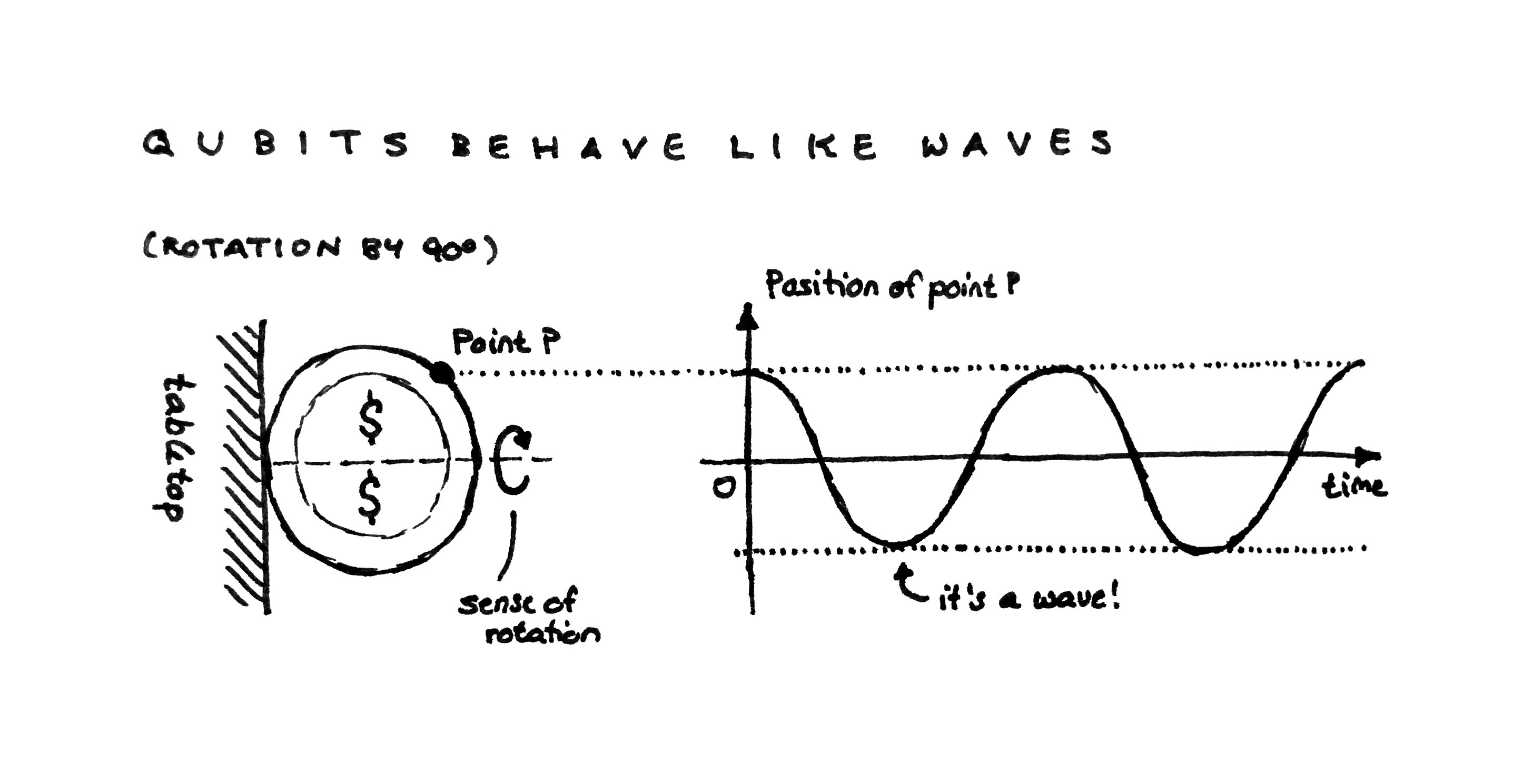 Schematic of trajectory of a point on a spinning coin