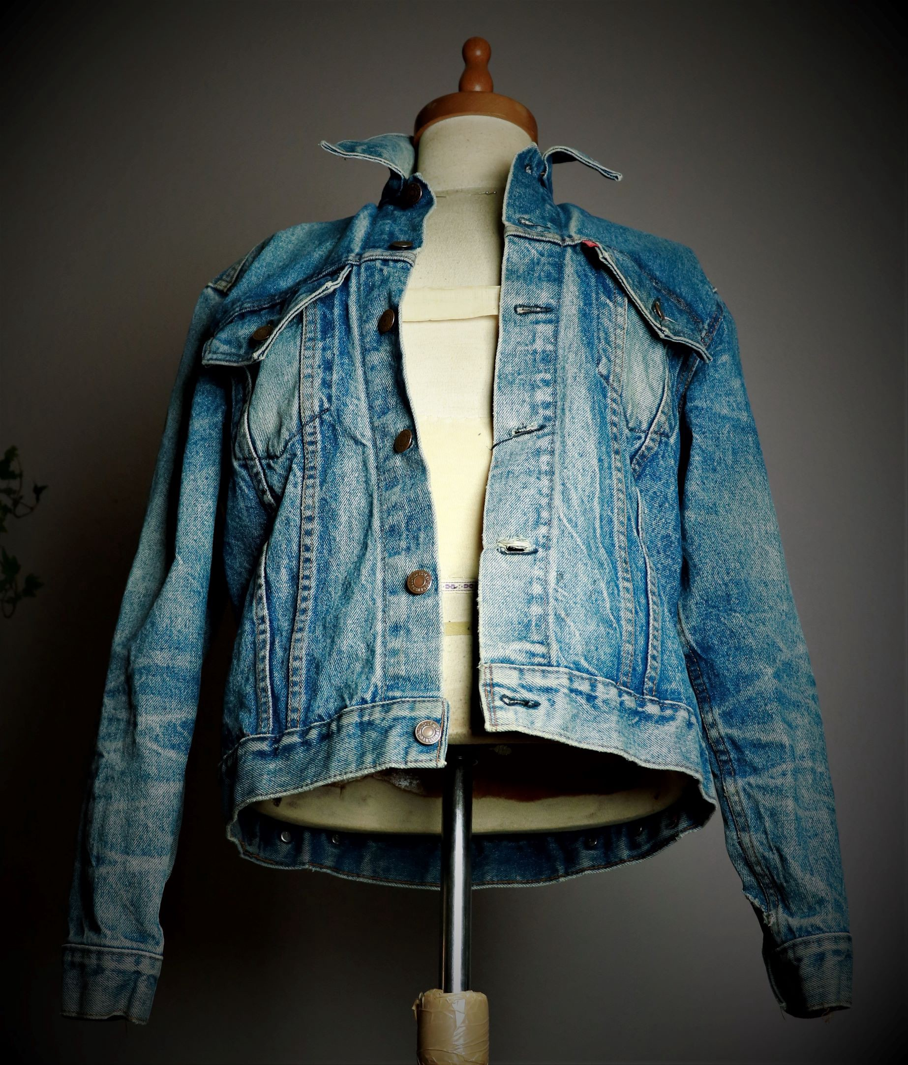 Levi's Jacket from 1977 front view photograph