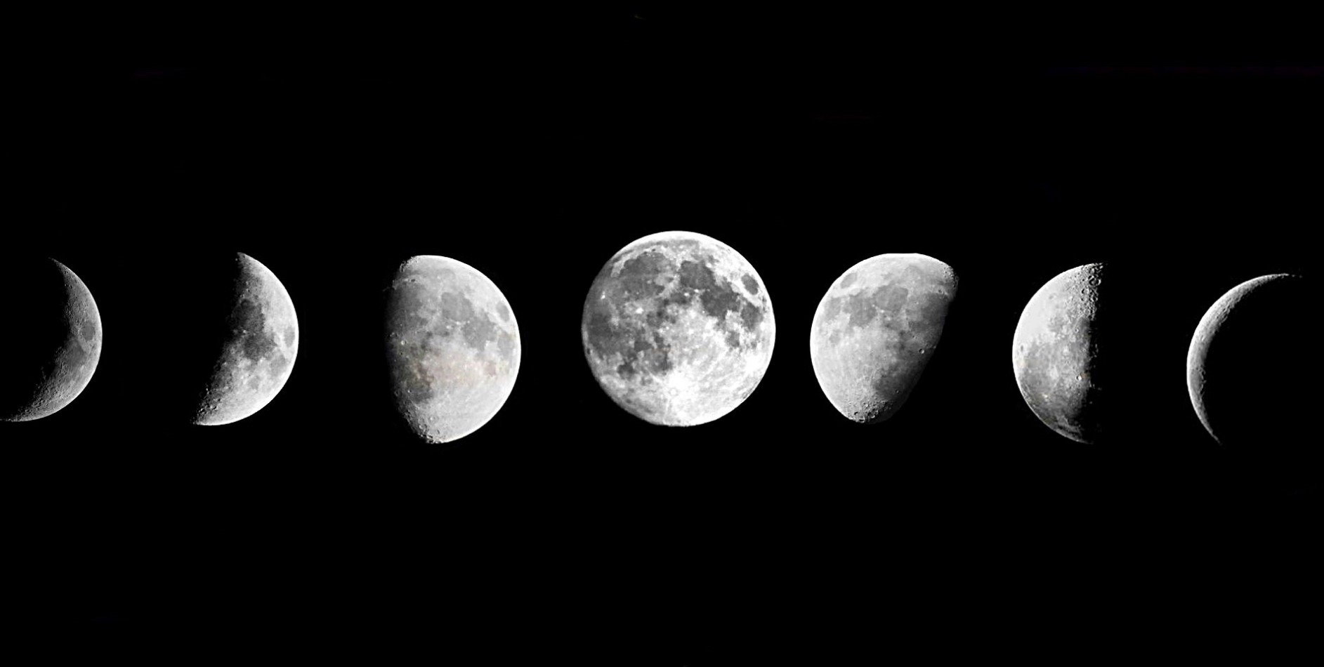 A picture of a moon's full phases from new to full, representing Mooning, a cryptocurrency slang word