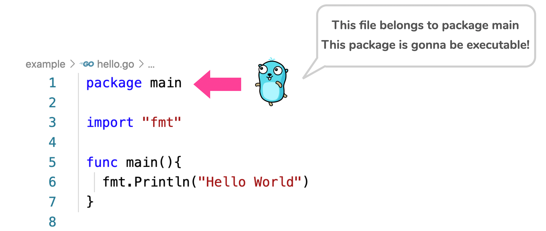Golang hello world — package main