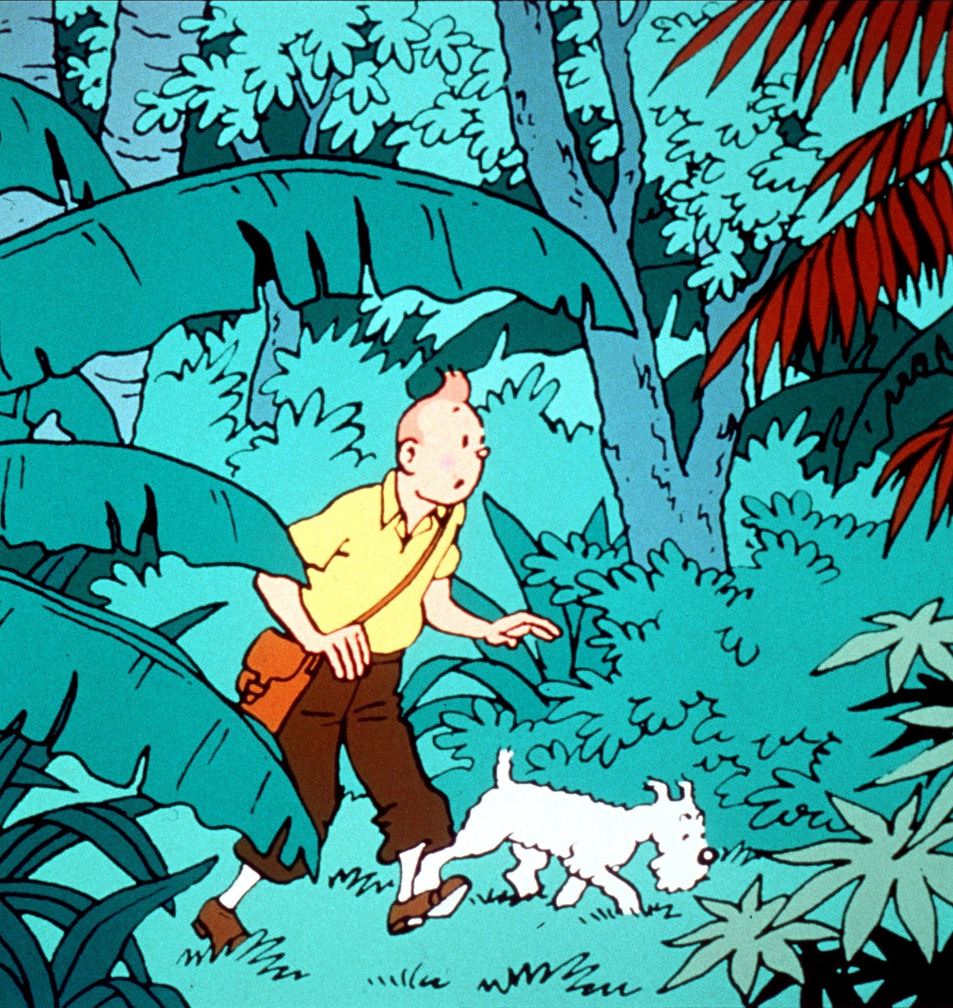 Tintin At 90 The Search For The Real Black Island And Why