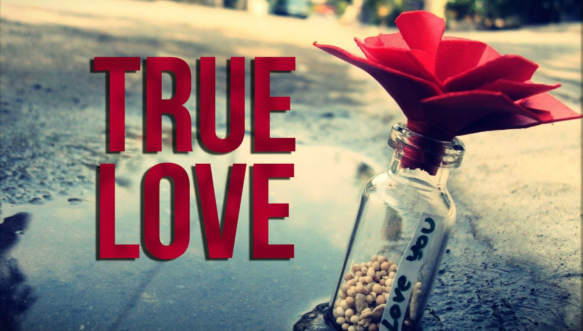 True Love! - This Glorious Mess