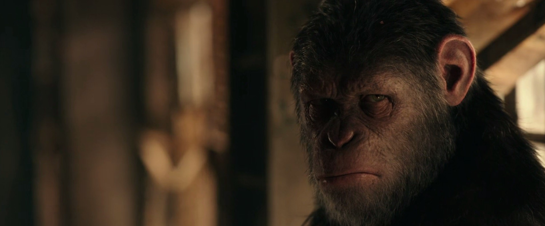 Concluding The Trilogy War For The Planet Of The Apes 2017 By Verthandi Wonka Medium