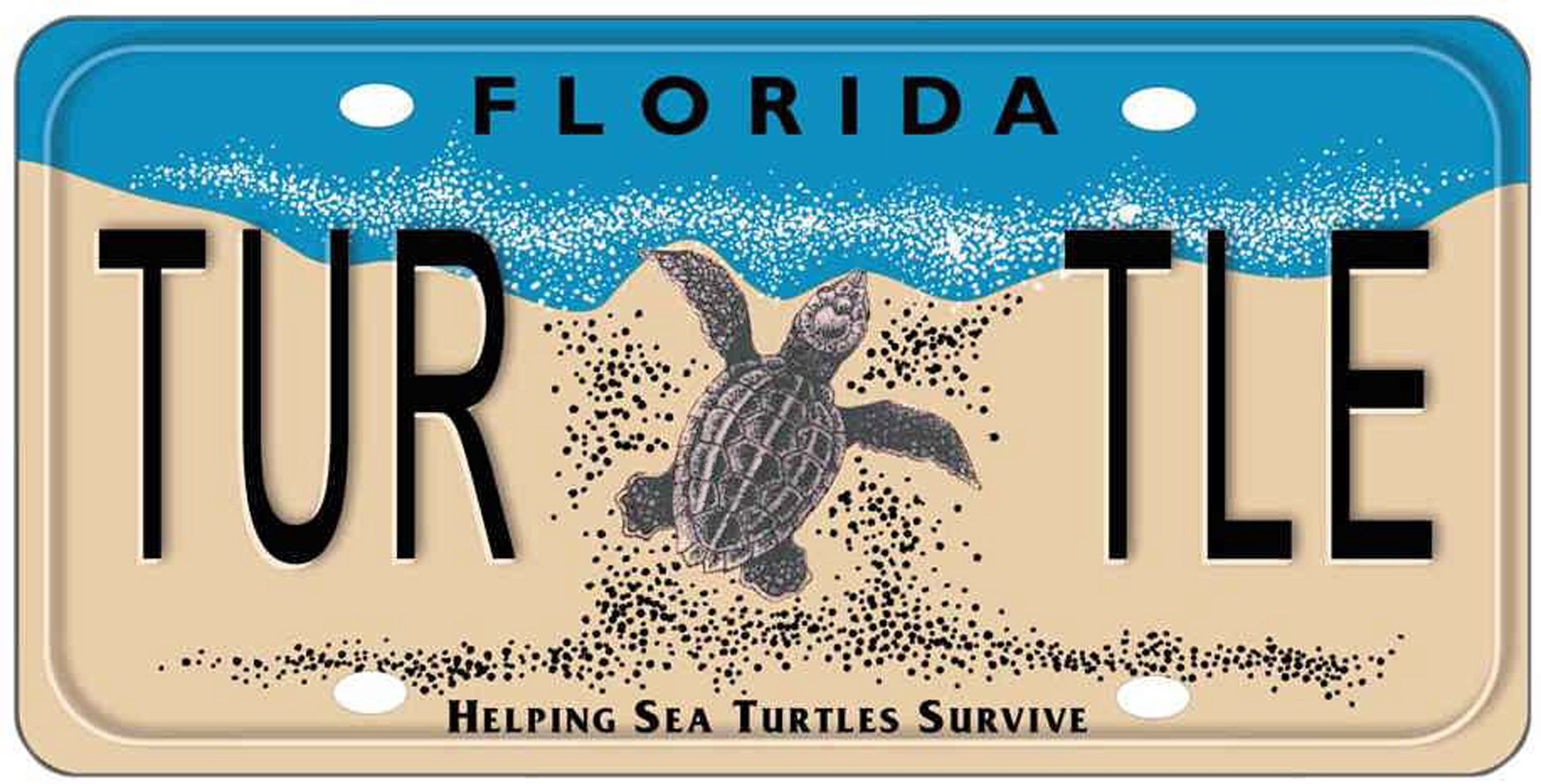 Plasticity, not Plastics, in the Diet of Kemp's Ridley Turtles