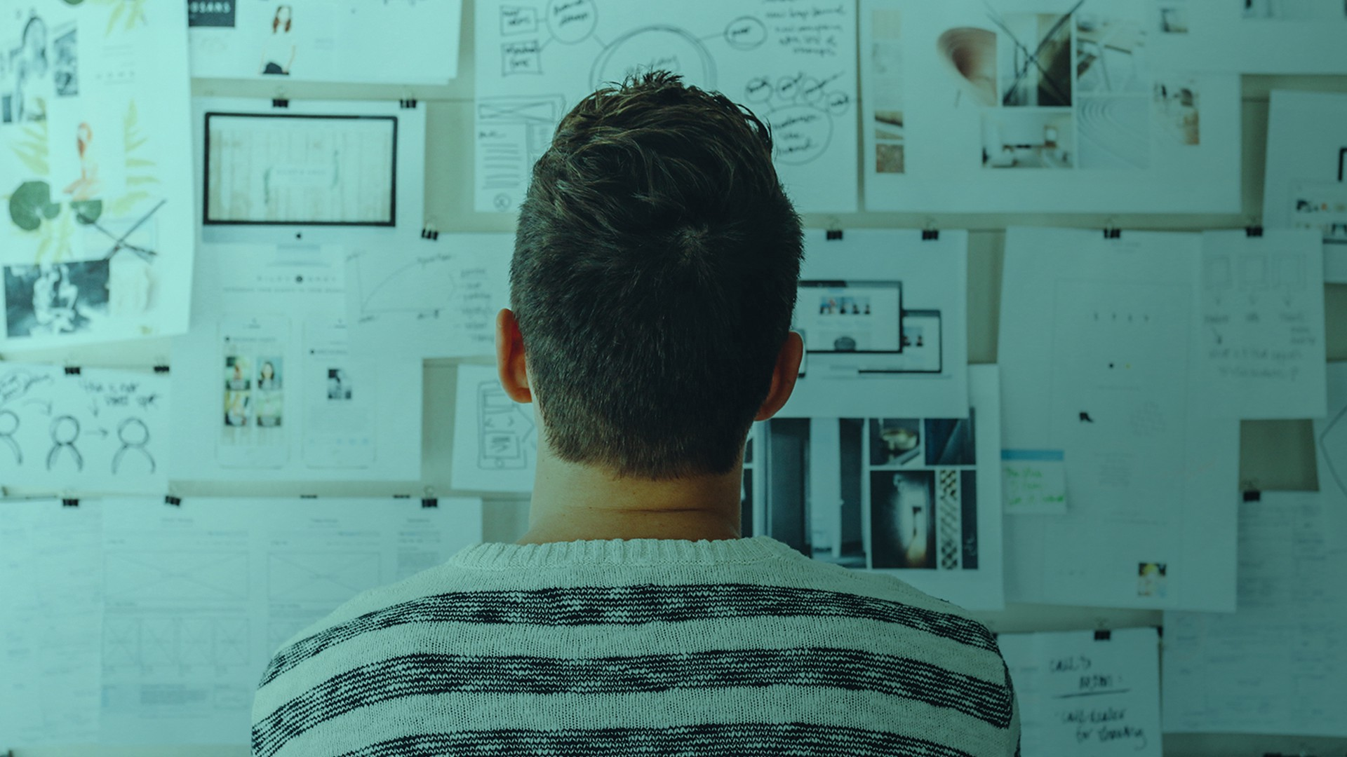 Back of man's head looking at sketches on paper pinned to a corkboard