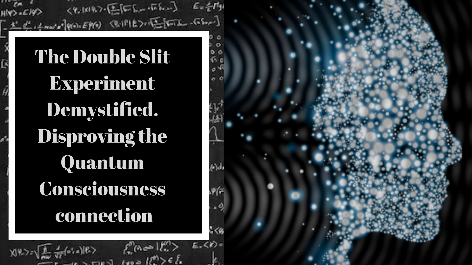 The Double Slit Experiment Demystified. Disproving the Quantum ...