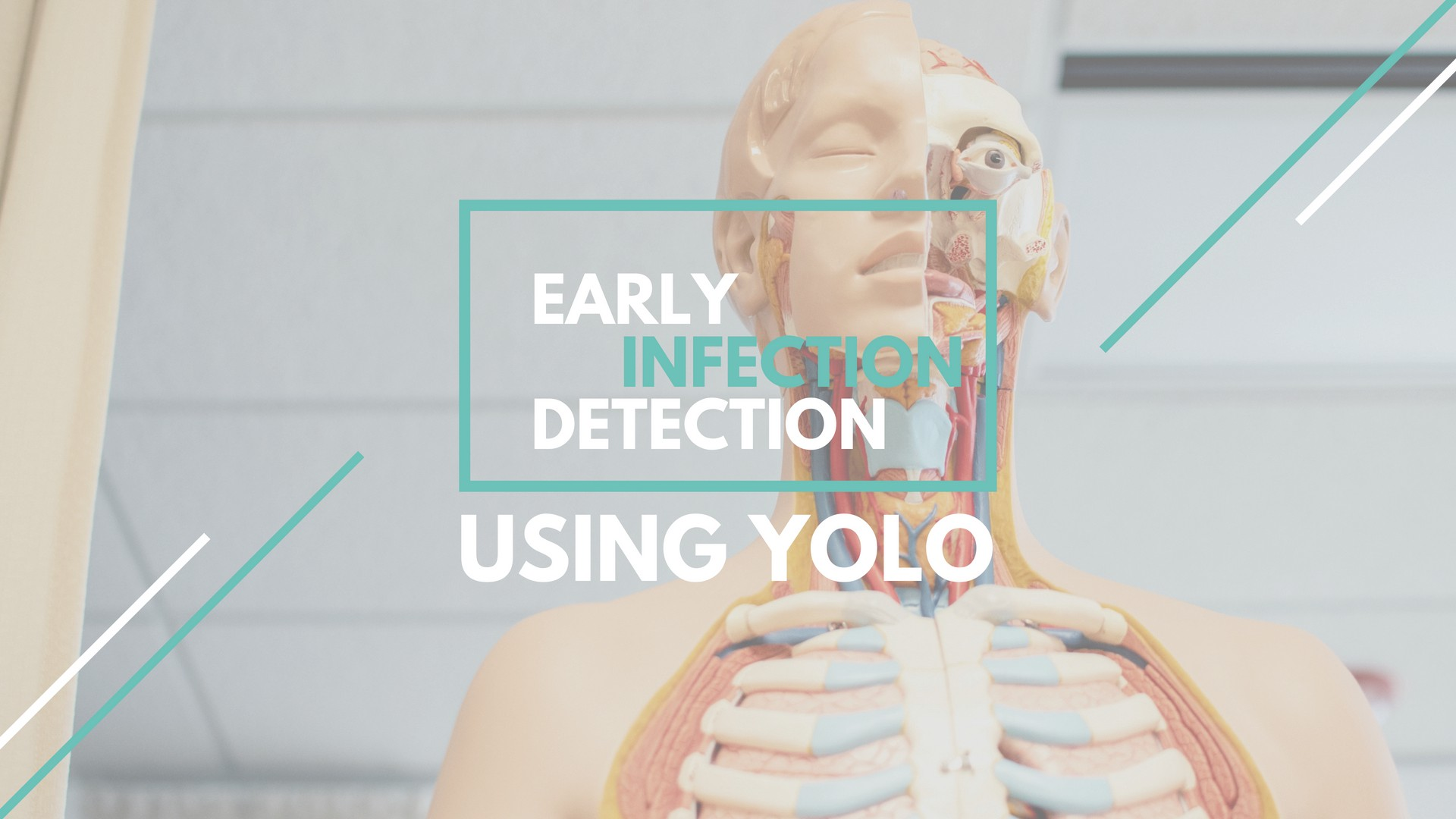 Early Infection Detection using YOLO - Cambridge Spark