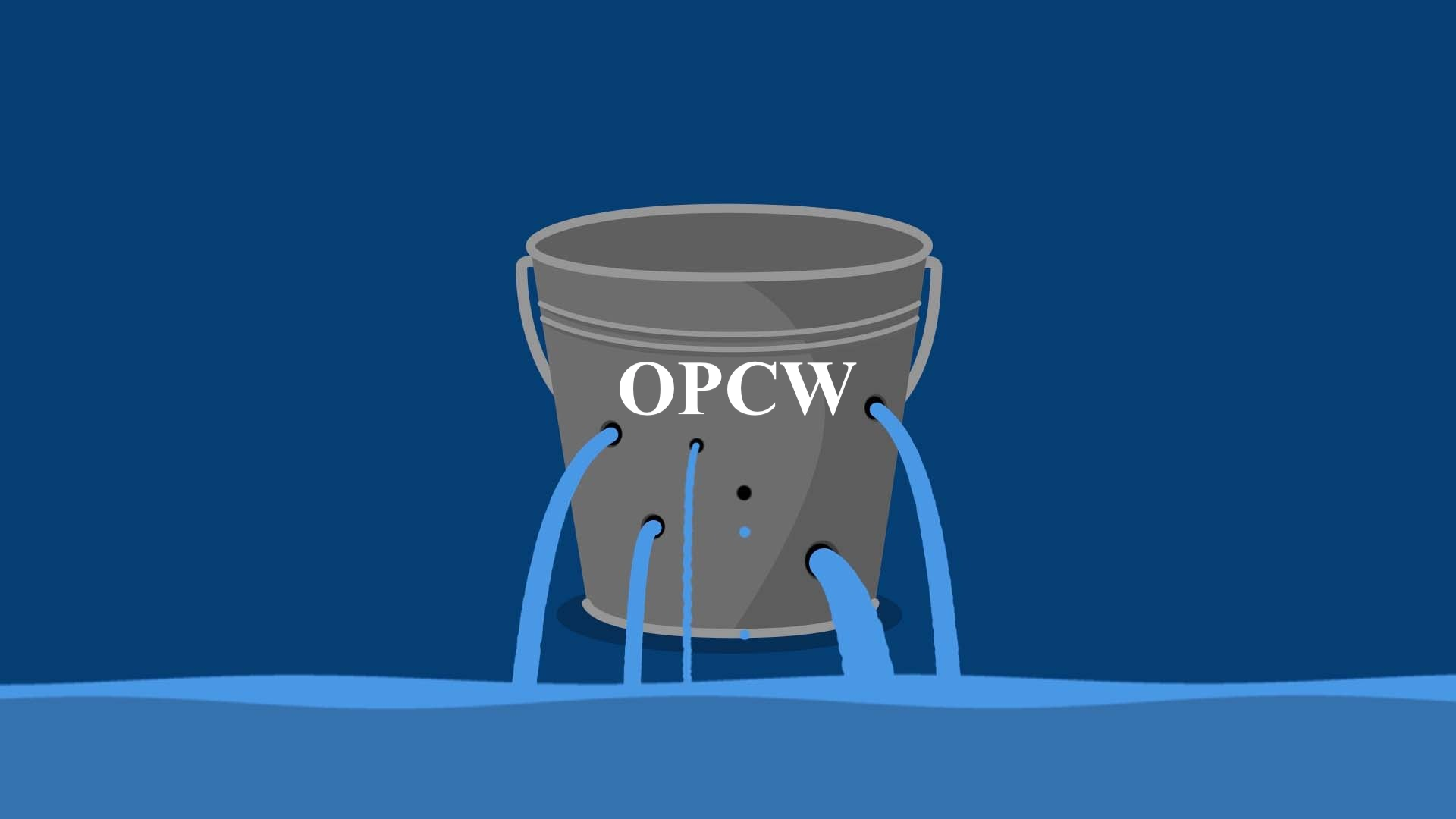 Image result for OPCW LEAKED