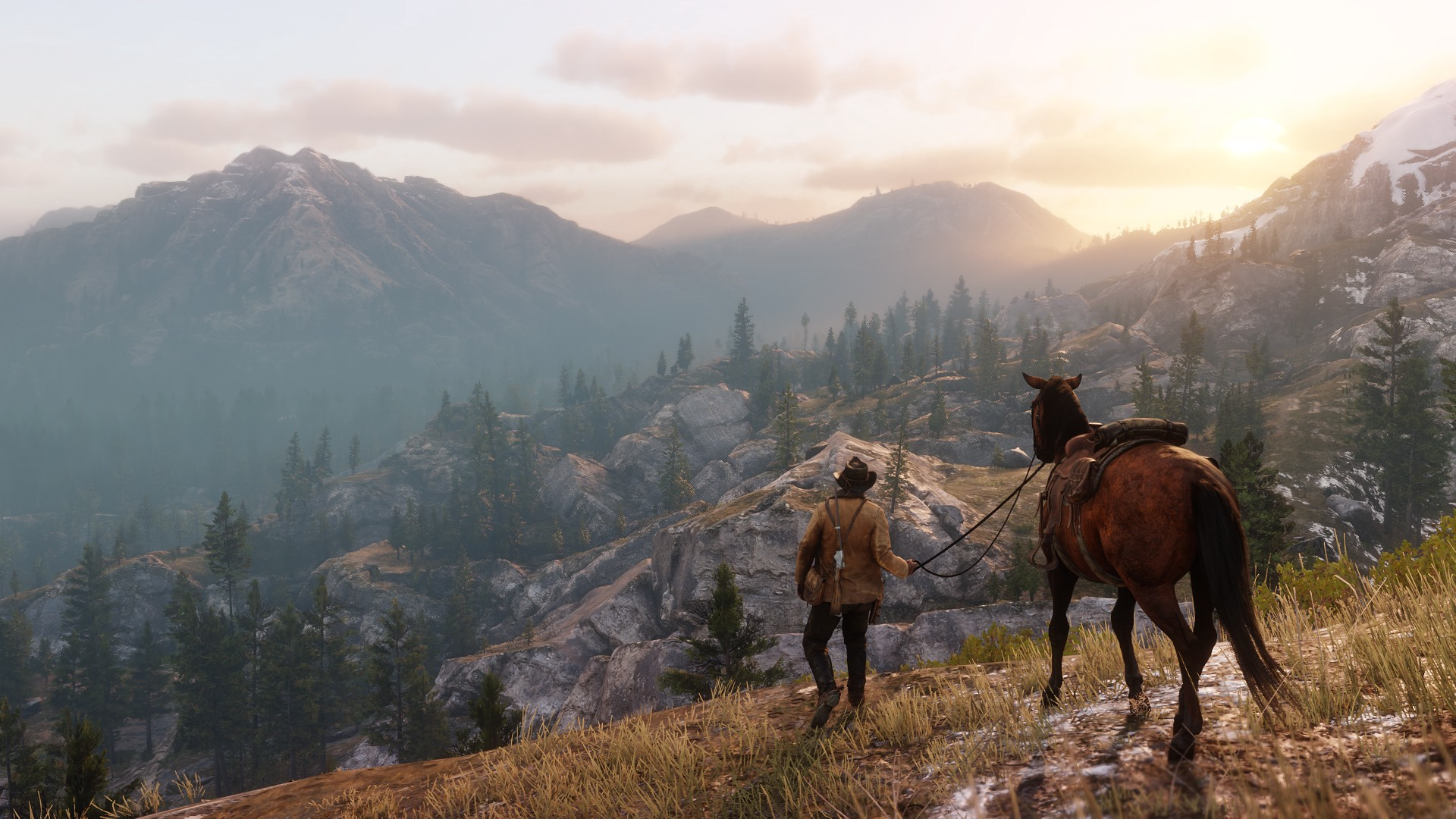 A screenshot from the video game 'Red Dead Redemption 2' featuring a cowboy character and his horse walking into a valley.