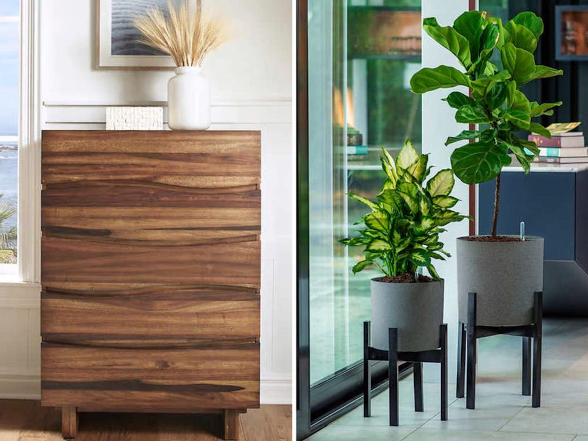 A dresser and two plants.