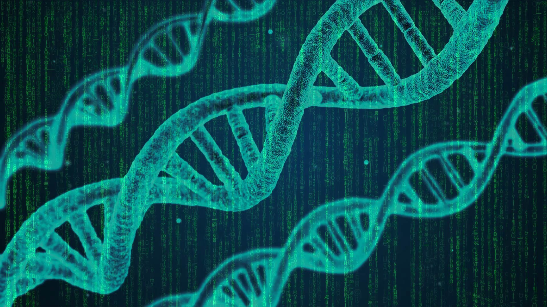 Illustration of a genetic algorithm (GA), the picture shows a DNA strain, along with a matrix background