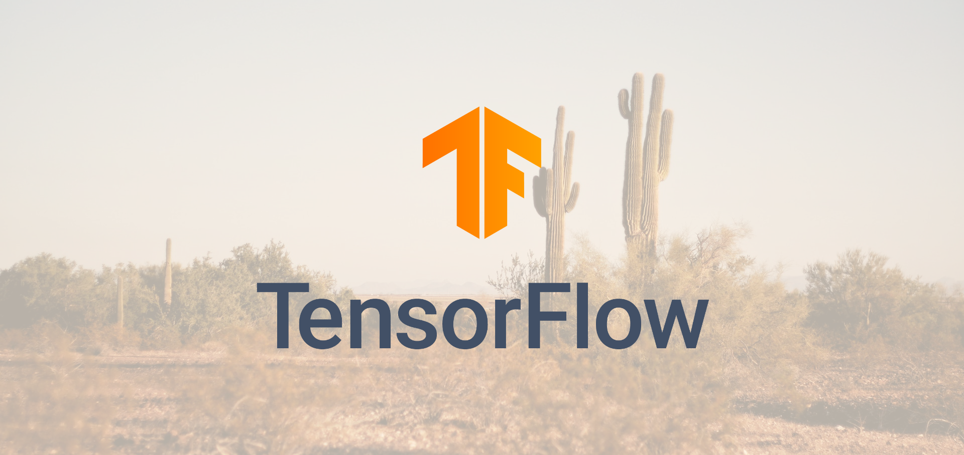 Easy Image Classification with TensorFlow 2 0 - Towards Data