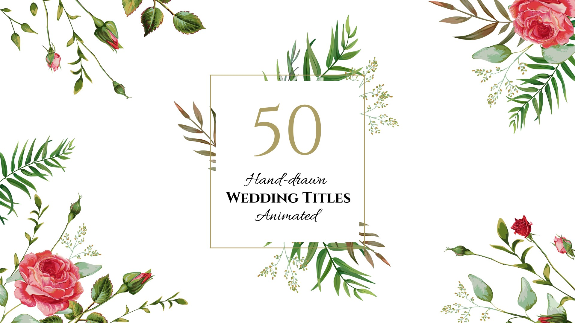 5 Essential After Effects Templates for your next Wedding Video Opener