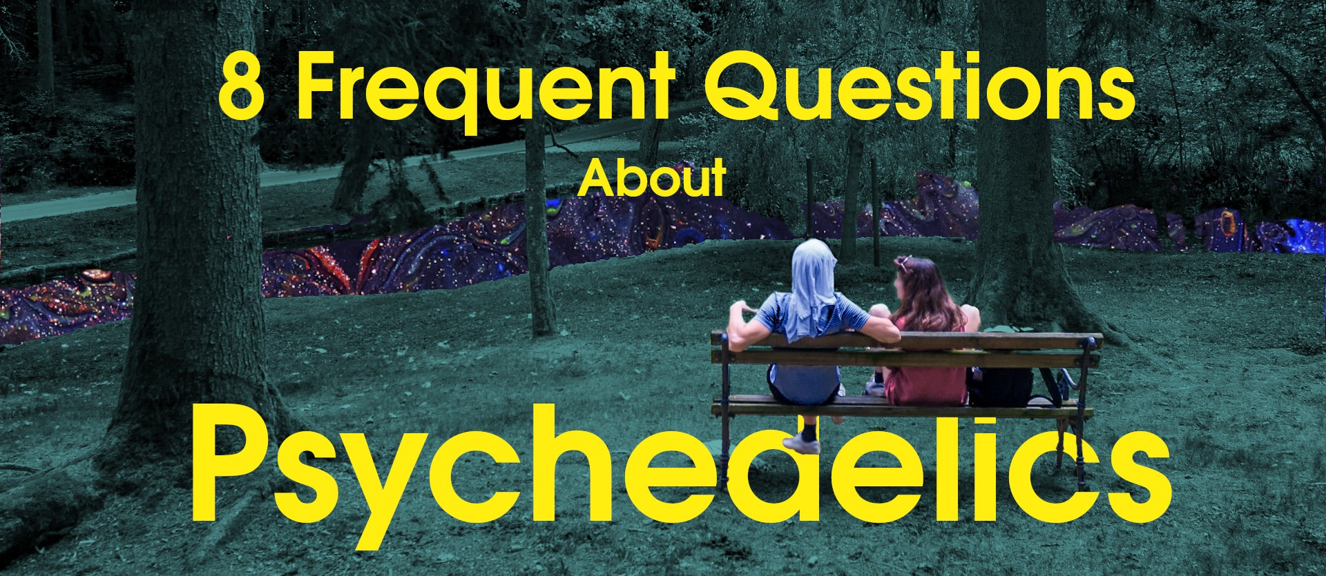 frequent questions about psychedelics cover