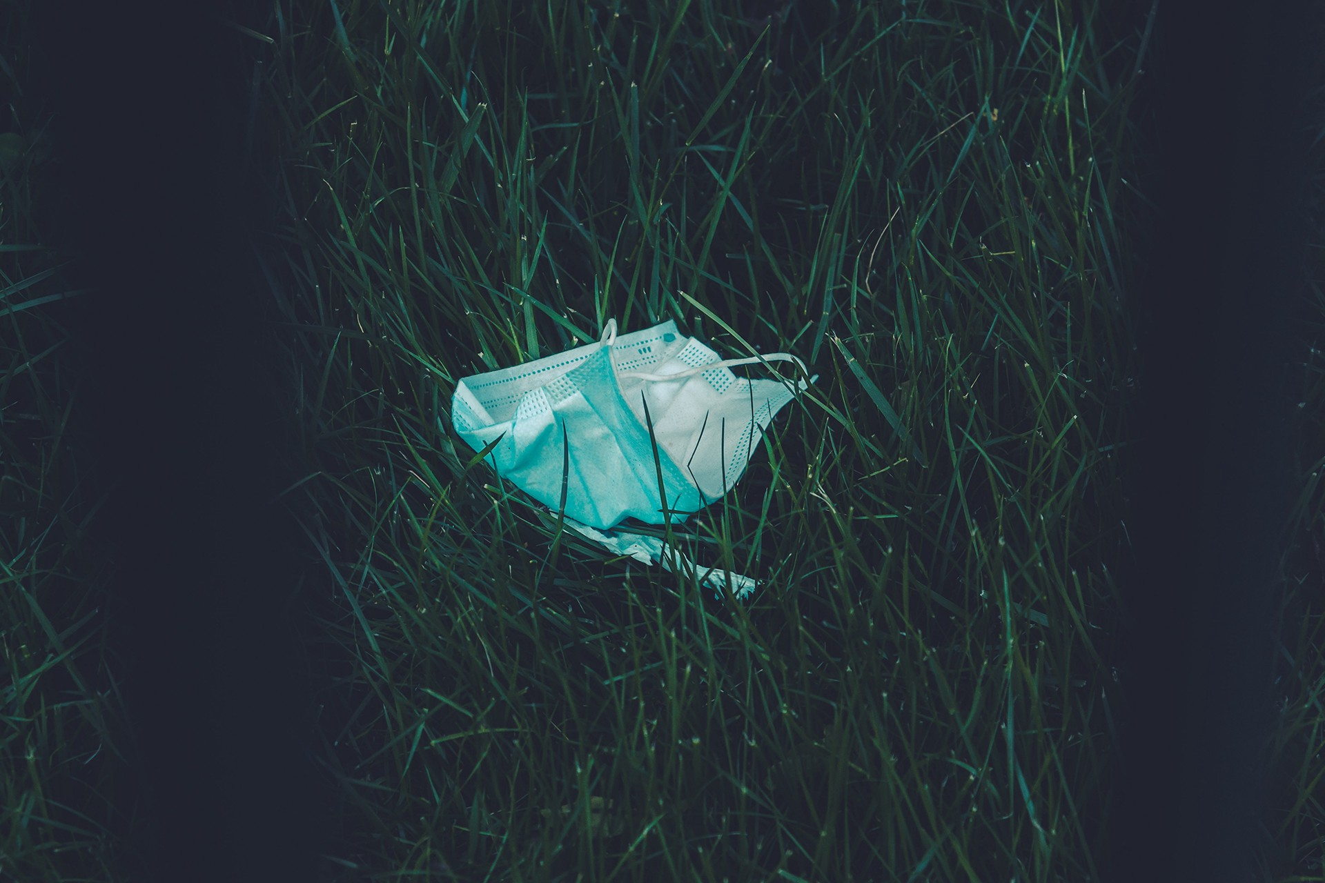 A face-mask littering the natural environment
