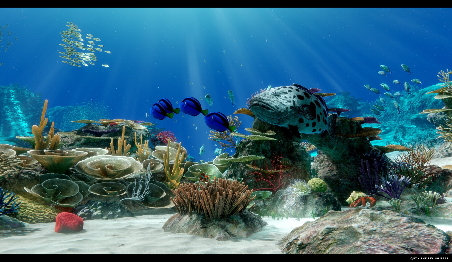 Picture of The Living Reef at QUT by Real-time Artist, Ryan Bargiel.