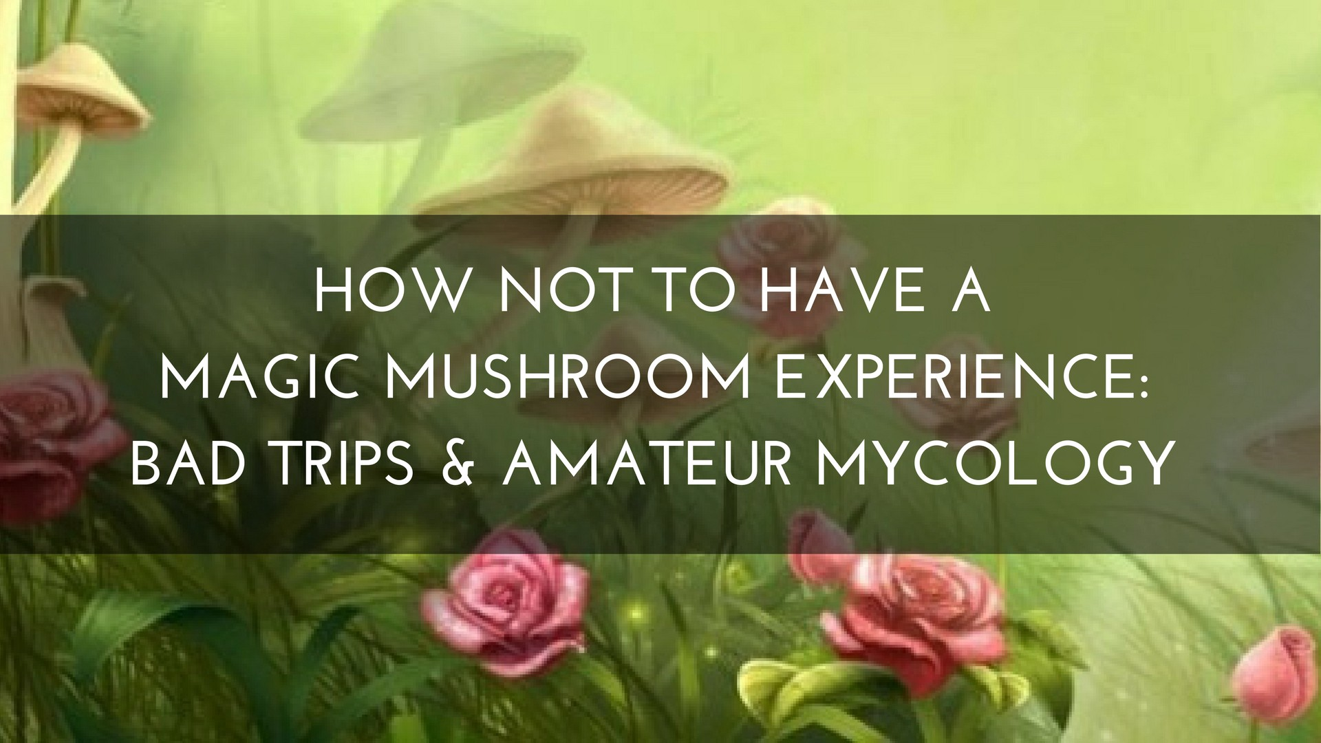 How NOT to Have a Magic Mushroom Experience: Bad Trips