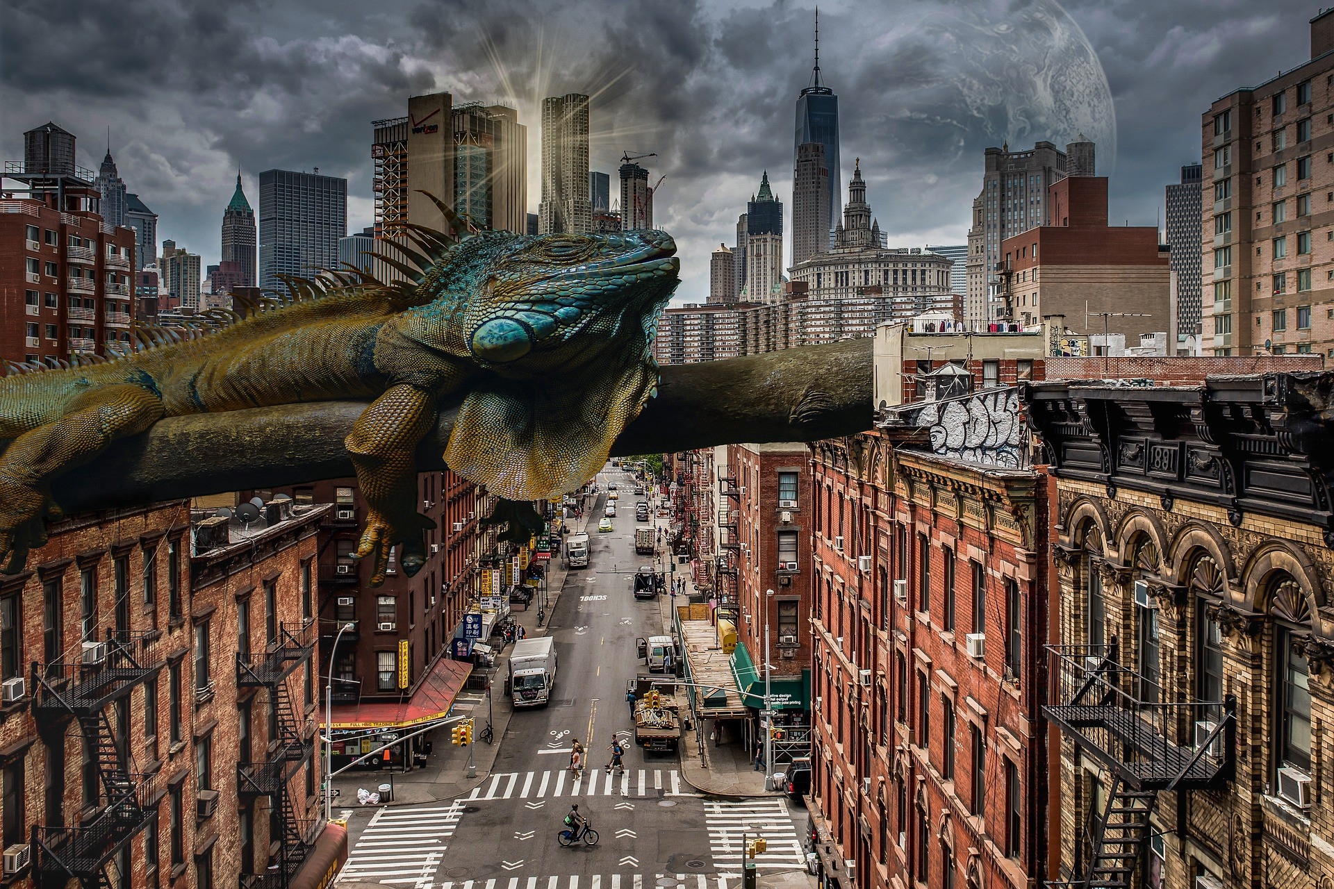 Iguana flying over a cityscape
