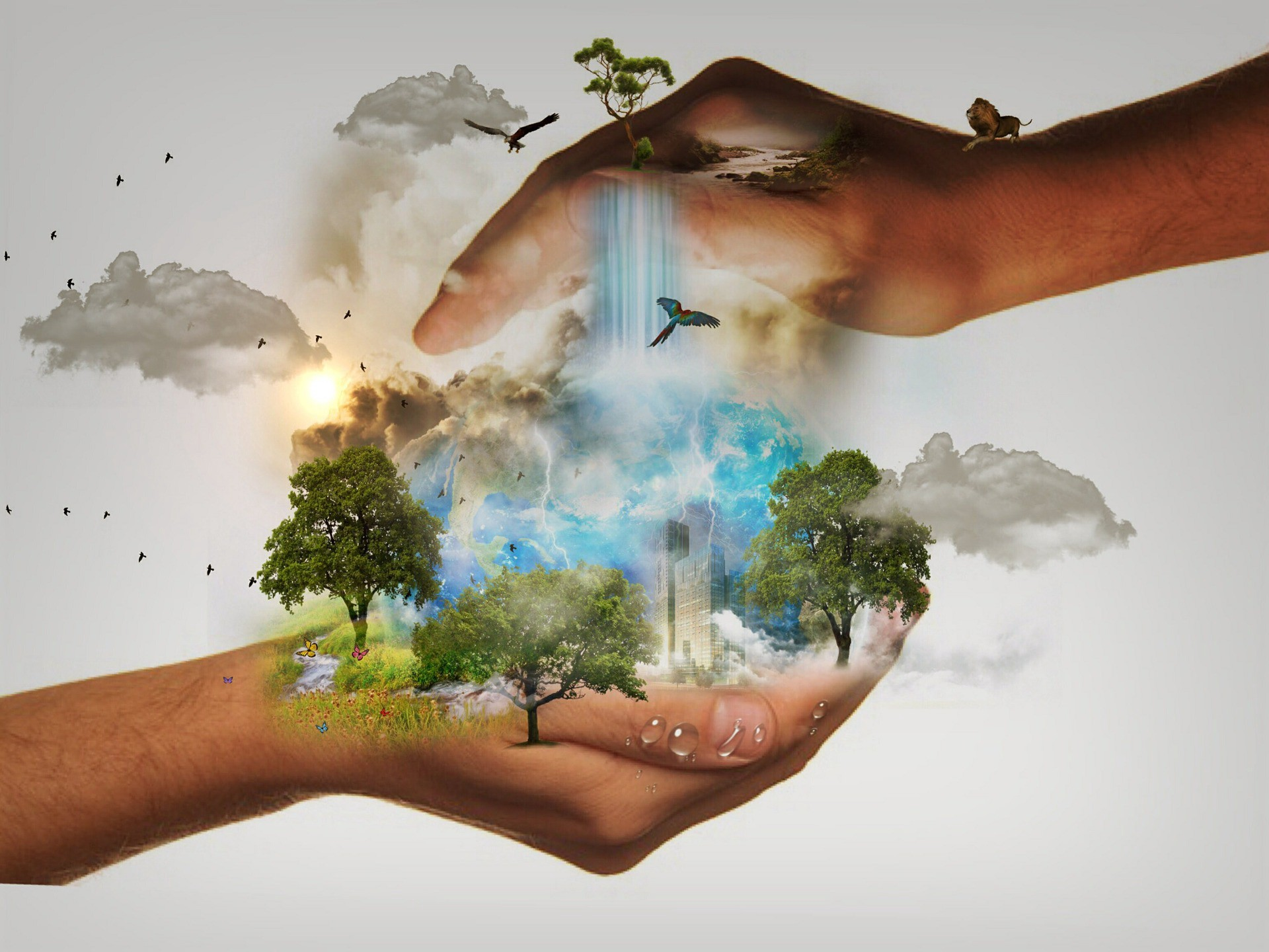 Two hands enveloping a city surrounded by trees, with lightening storm.