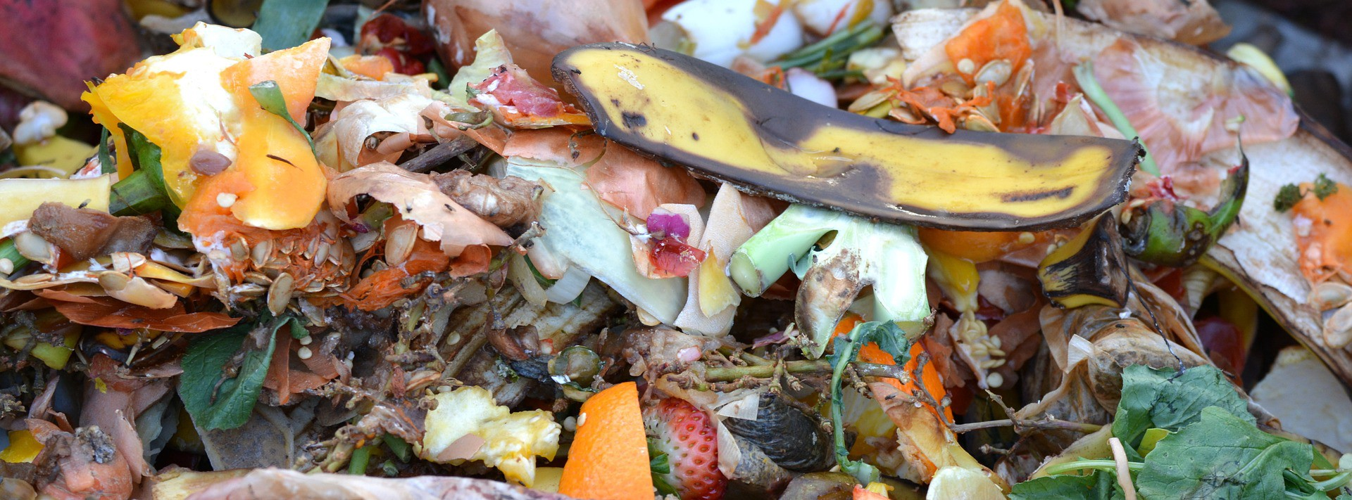 A pile of food scraps, including banana peels, onion skin, and eggshells.