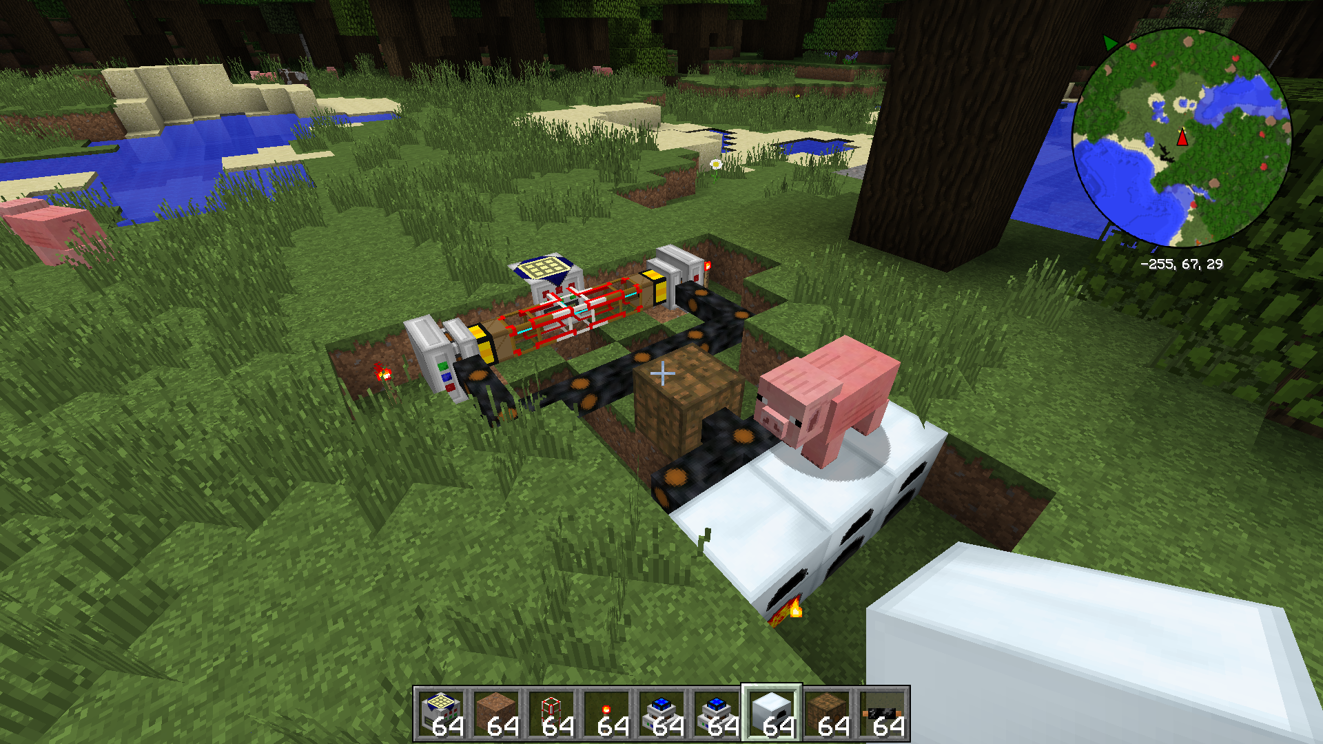 A pig sitting on top of my converter.