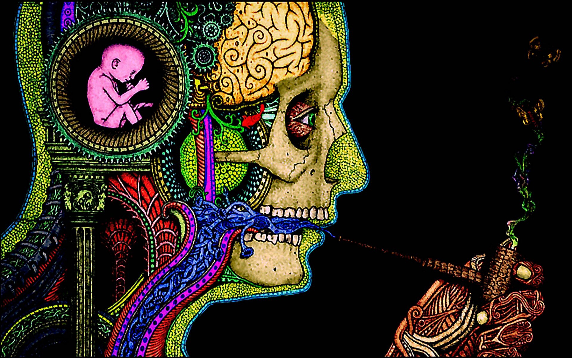 A Heroic Dose of LSD Fixed the Relationship with my Father, and