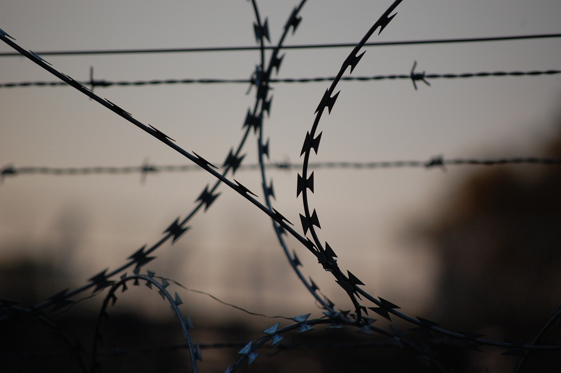 Close-up of prison razor-wire fencing.