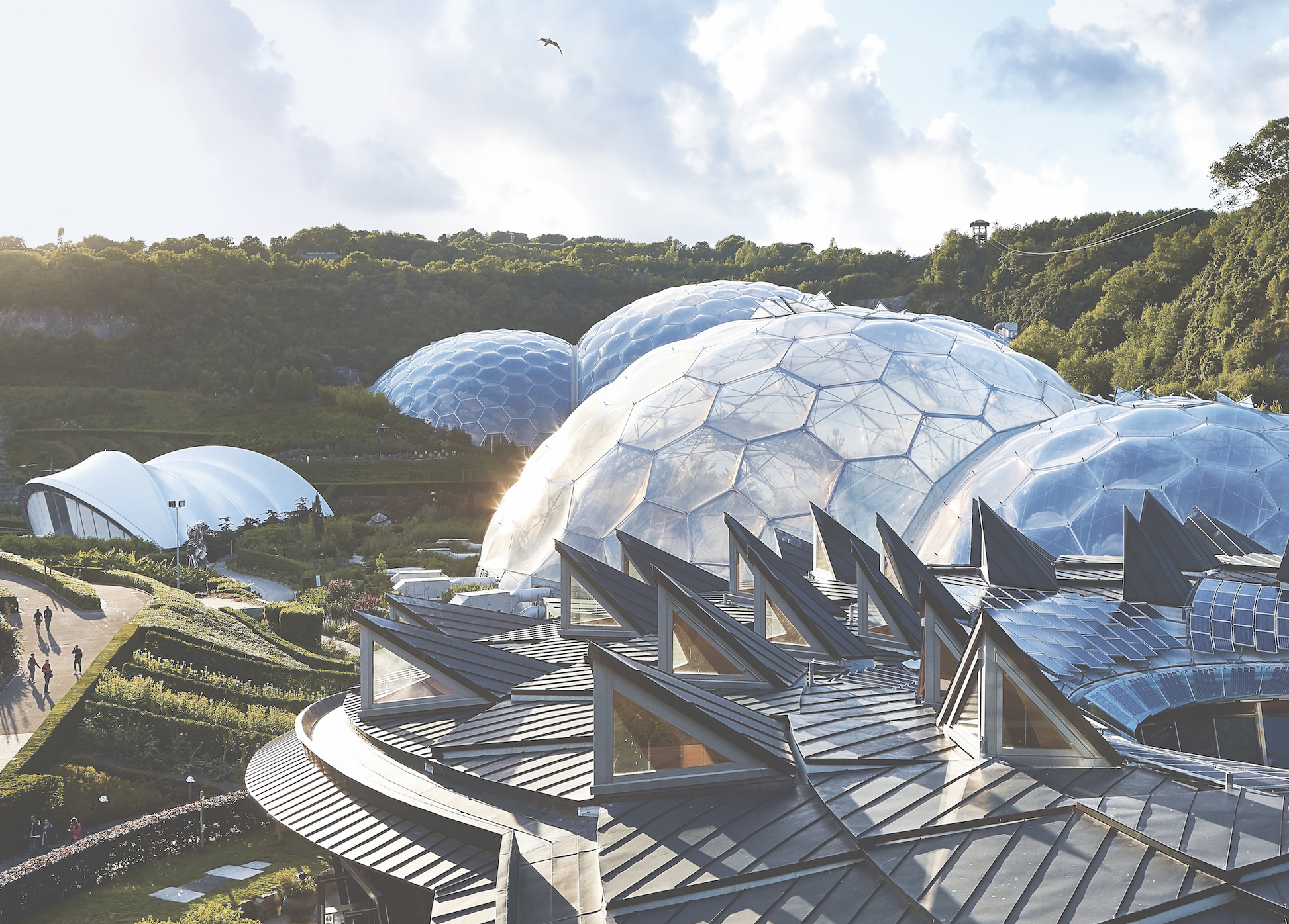 Landscape of eight interlinked geodesic dome structures