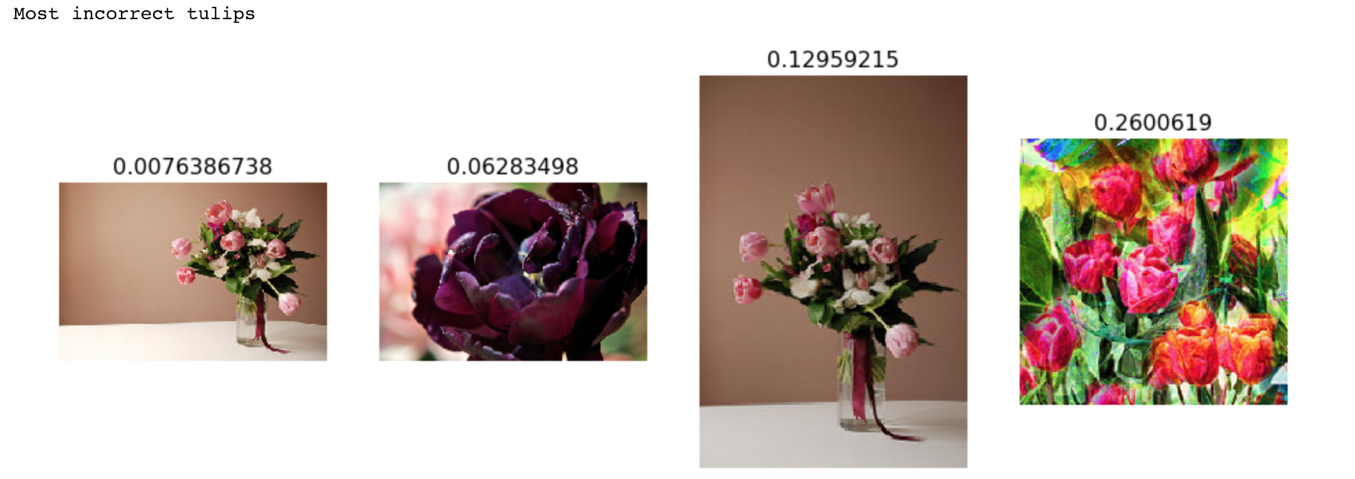 Flower classification with Convolutional Neural Networks